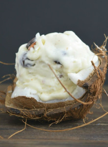 no churn almond joy ice cream