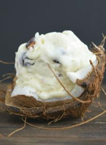 no churn almond joy ice cream
