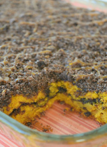 Chocolate Pumpkin Coffee Cake Recipe