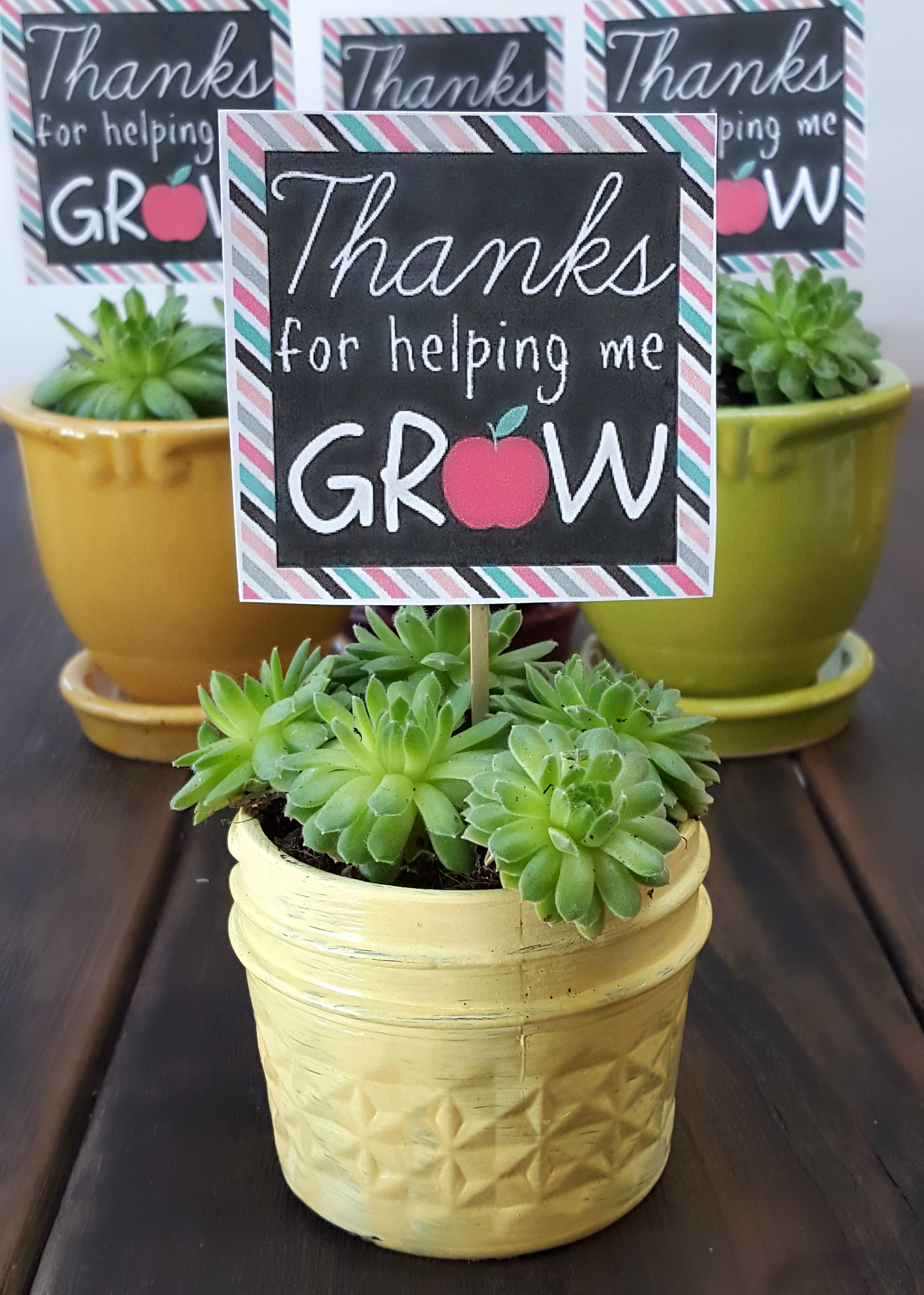 This is an image of Thank You for Helping Us Grow Printable inside gift ideas